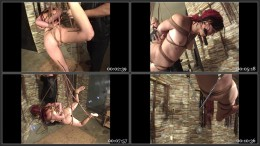 Robin Suspended nipple Clamped