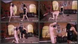 S1126 4-4 Michellelacy Ballbust