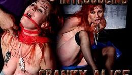 Introducing Slave Spanky Alice HD